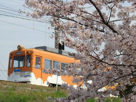 阪堺電軌モ501形(浜寺駅前〜船尾)