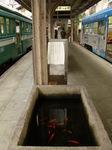 モ161形&モ701形&金魚の水槽(住吉公園駅)